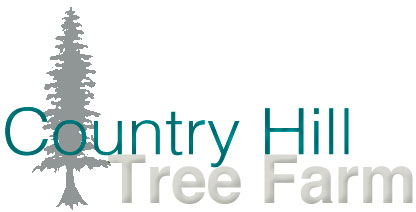 Country Hill Tree Farm
